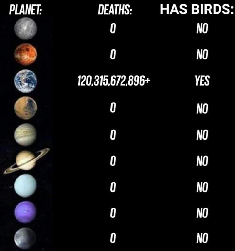 Text - PLANET: DEATHS: HAS BIRDS: 0 NO 0 NO 120,315,672,896+ YES NO 0 NO NO 0 NO O NO NO