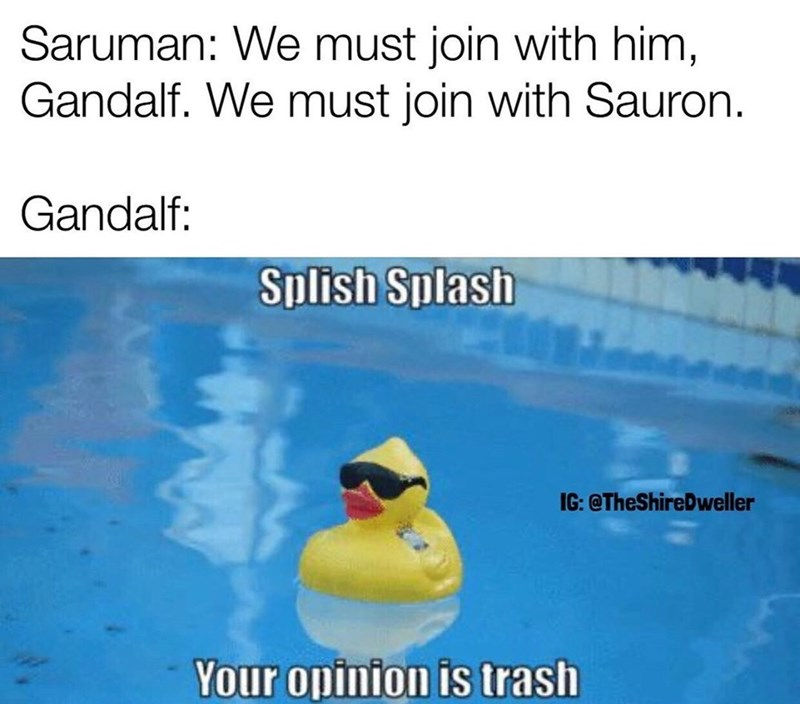 Text - Saruman: We must join with him, Gandalf. We must join with Sauron. Gandalf: Splish Splash IG: @TheShireDweller Your opinion is trash