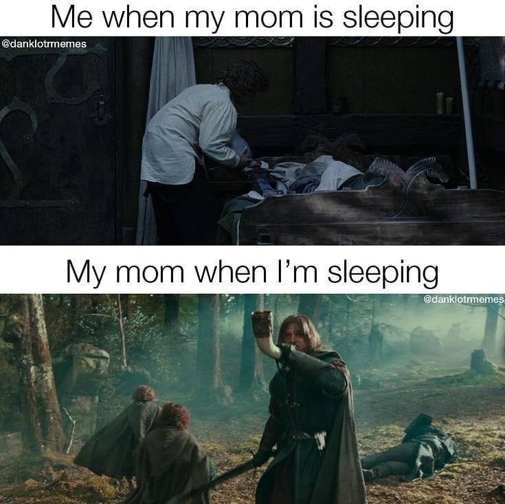 Text - Me when my mom is sleeping @danklotrmemes My mom when I'm sleeping @danklotrmemes