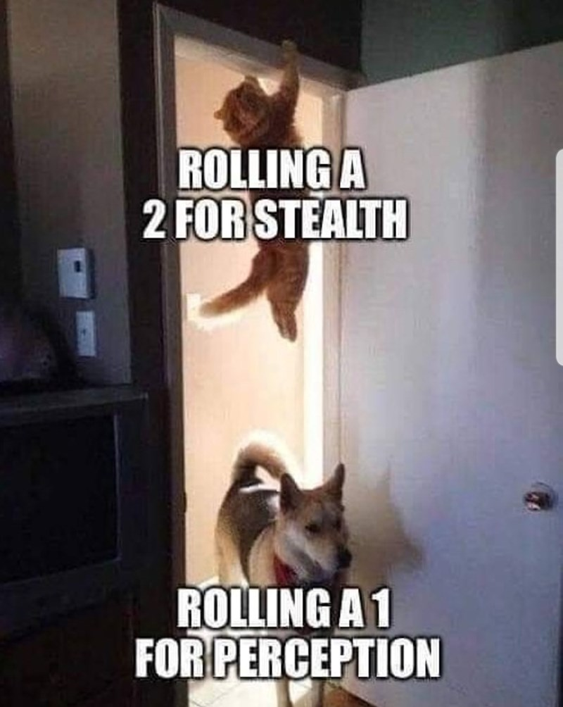 Internet meme - ROLLING A 2 FOR STEALTH ROLLING A 1 FOR PERCEPTION
