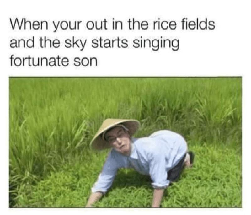 People in nature - When your out in the rice fields and the sky starts singing fortunate son