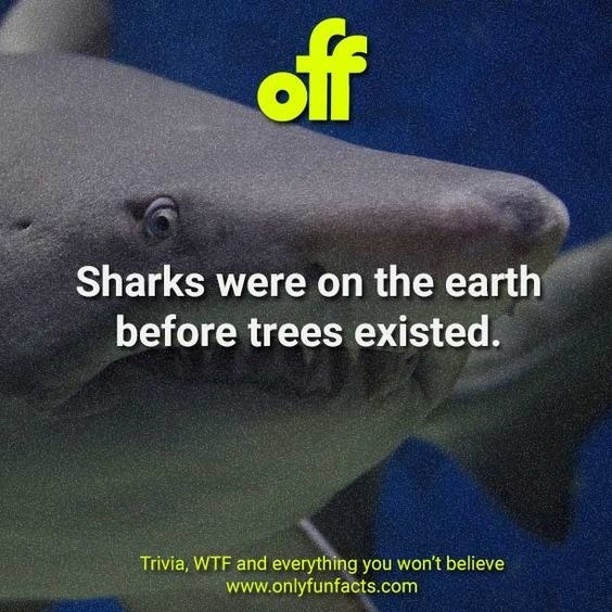 Organism - off Sharks were on the earth before trees existed. Trivia, WTF and everything you won't believe www.onlyfunfacts.com