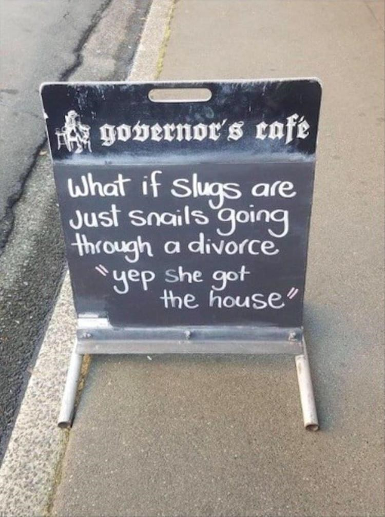 The Governors Cafe what if slugs are just snails going through divorce yep she got the house