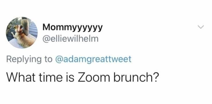 Text - Mommyyyyyy @elliewilhelm Replying to @adamgreattweet What time is Zoom brunch?