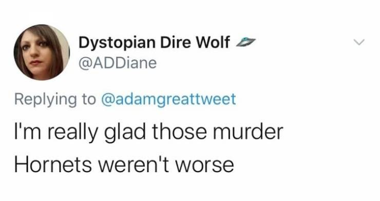 Text - Dystopian Dire Wolf @ADDiane Replying to @adamgreattweet I'm really glad those murder Hornets weren't worse
