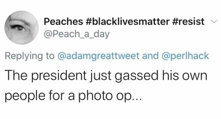 Text - Peaches #blacklivesmatter #resist @Peach_a_day Replying to @adamgreattweet and @perlhack The president just gassed his own people for a photo op...