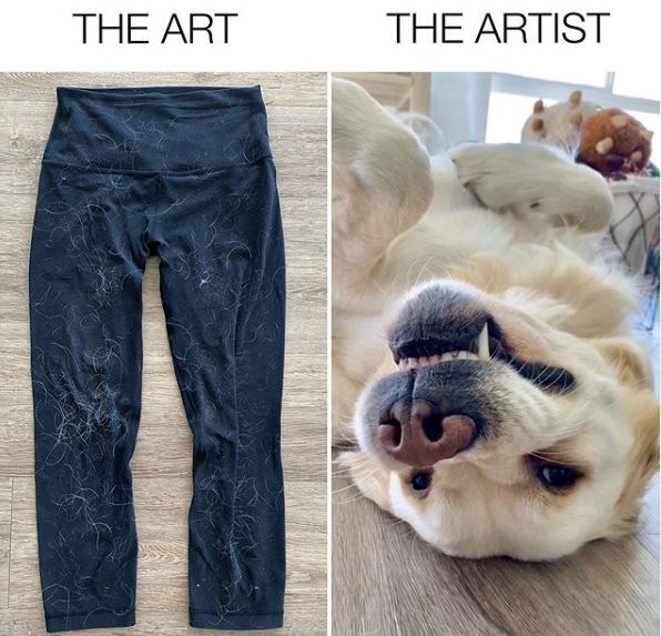 Jeans - THE ART THE ARTIST