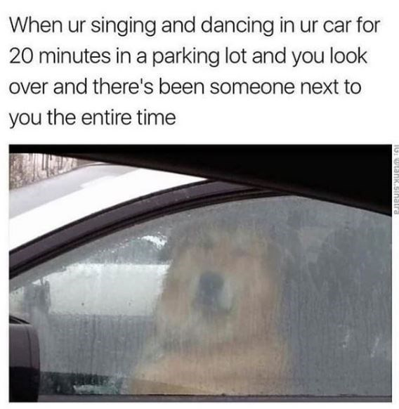 Text - When ur singing and dancing in ur car for 20 minutes in a parking lot and you look over and there's been someone next to you the entire time IG: ULank.sinallra