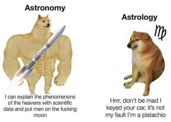 Felidae - Astronomy Astrology I can explain the phenomenons of the heavens with scientific Hrrr, don't be mad I keyed your car, it's not my fault I'm a pistachio data and put men on the fucking moon