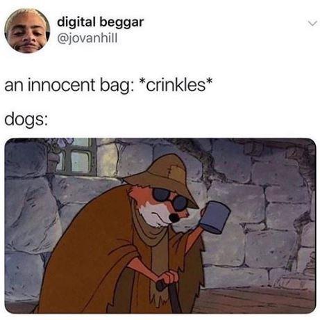 Cartoon - digital beggar @jovanhill an innocent bag: *crinkles* dogs: