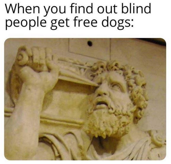 Relief - When you find out blind people get free dogs: