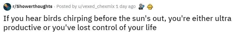 Text - r/Showerthoughts Posted by u/vexed_chexmix 1 day ago If you hear birds chirping before the sun's out, you're either ultra productive or you've lost control of your life