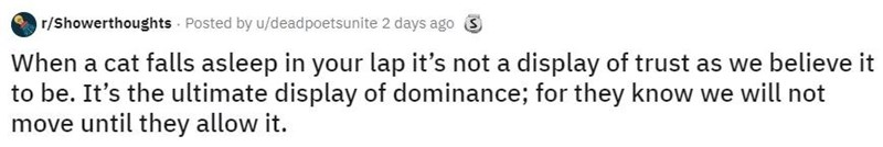 Text - r/Showerthoughts Posted by u/deadpoetsunite 2 days ago S When a cat falls asleep in your lap it's not a display of trust as we believe it to be. It's the ultimate display of dominance; for they know we will not move until they allow it.