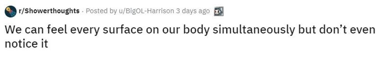 Text - r/Showerthoughts Posted by u/BigOL-Harrison 3 days ago We can feel every surface on our body simultaneously but don't even notice it
