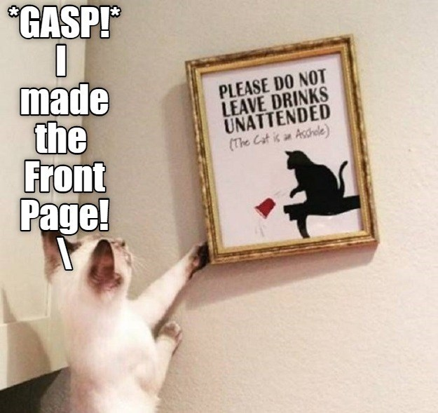 cat meme Save made: l made it to Front Page! PLEASE DO NOT LEAVE DRINKS UNATTENDED