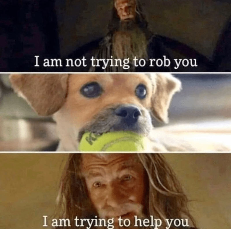 Funny lord of the rings dog meme, i am not trying to hurt you i am try to help you, gandalf, ian mckellen | Gandalf talking to a dog holding a ball in its mouth
