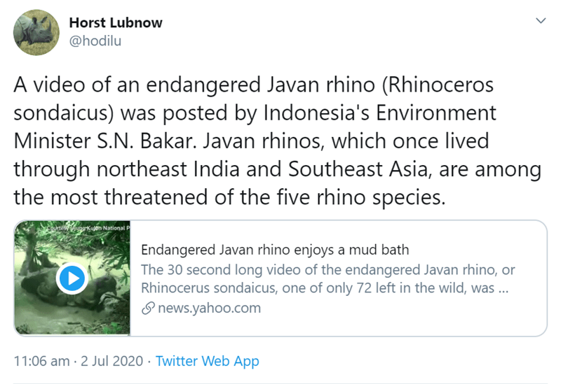 Text - Horst Lubnow @hodilu A video of an endangered Javan rhino (Rhinoceros sondaicus) was posted by Indonesia's Environment Minister S.N. Bakar. Javan rhinos, which once lived through northeast India and Southeast Asia, are among the most threatened of the five rhino species. ainesuporkuon National Endangered Javan rhino enjoys a mud bath The 30 second long video of the endangered Javan rhino, or Rhinocerus sondaicus, one of only 72 left in the wild, was ... I news.yahoo.com 11:06 am · 2 Jul 2