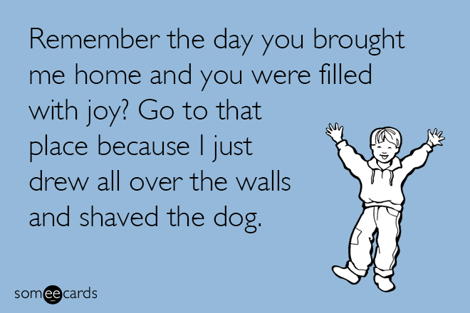 Text - Remember the day you brought me home and you were filled with joy? Go to that place because I just drew all over the walls and shaved the dog. somee cards