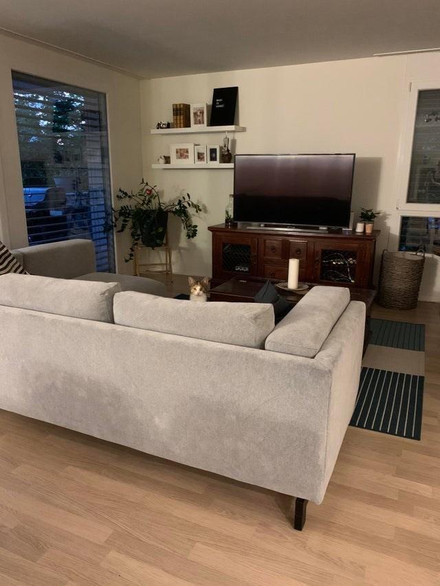 Furniture - SARUR