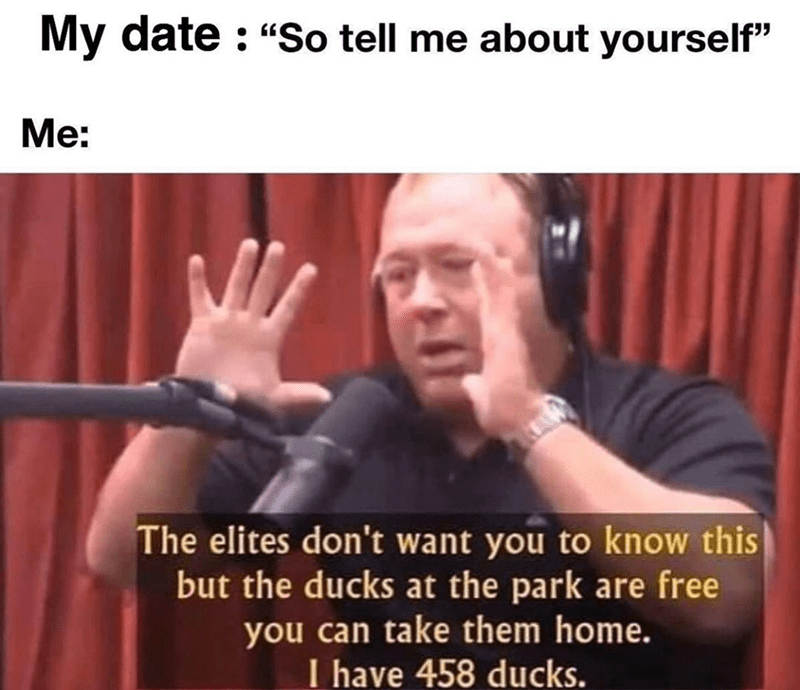 Funny meme about going on a date, picture of alex jones talking about how ducks are free | My date : Me: So tell me about yourself The elites don't want you to know this but the ducks at the park are free you can take them home. have 458 ducks.