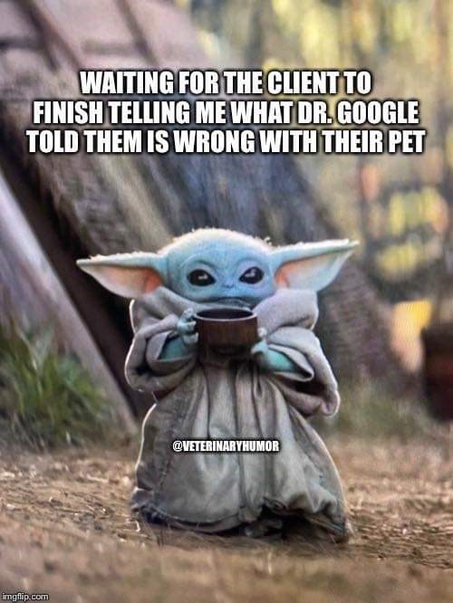 Yoda - WAITING FOR THE CLIENT TO FINISH TELLING ME WHAT DR. GOOGLE TOLD THEM IS WRONG WITH THEIR PET @VETERINARYHUMOR imgflip.com