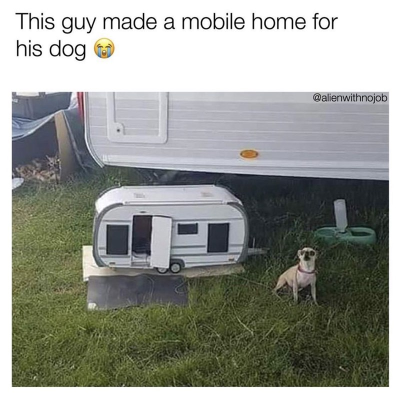 Transport - This guy made a mobile home for his dog @alienwithnojob