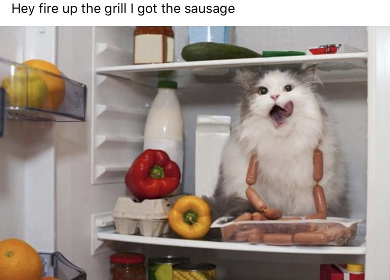 Refrigerator - Hey fire up the grill I got the sausage