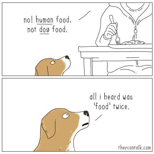 Text - no! human food, not dog food. all i heard was 'food' twice. theycantalk.com