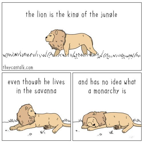 Text - the lion is the king of the jungle theycantalk.com ッシシバ yuw even thoush he lives in the savanna and has no idea what a monarchy is ソN
