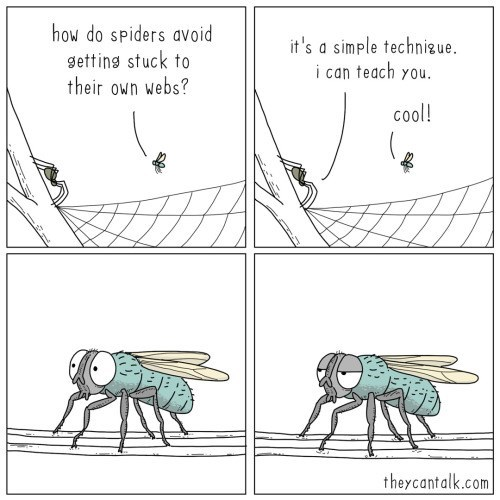 Text - how do spiders avoid getting stuck to their own webs? it's a simple technigue. i can teach you. cool! theycantalk.com