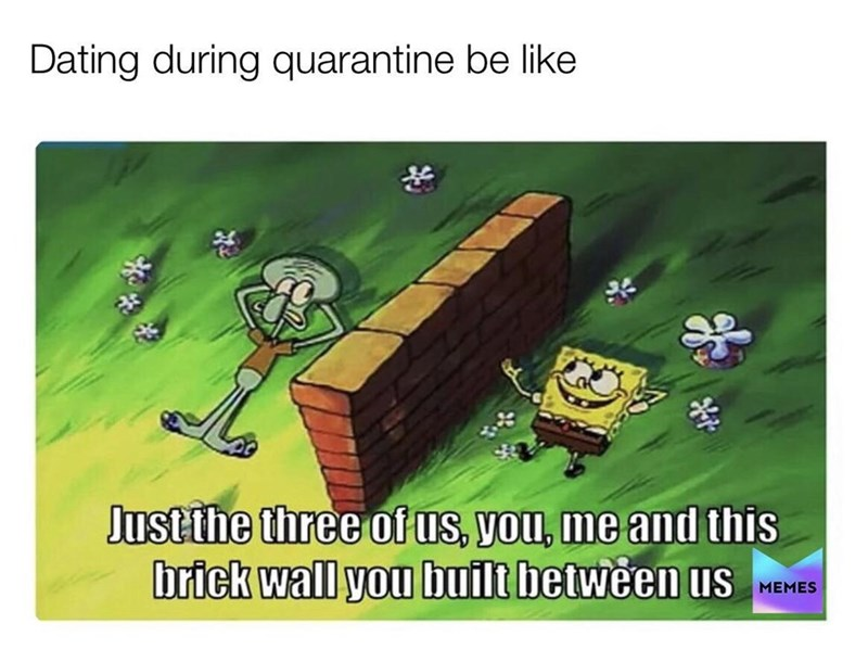 Cartoon - Dating during quarantine be like Justthe three of us, you, me and this brick wall you built between us MEMES