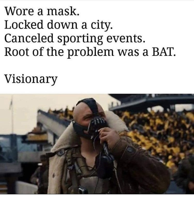 Text - Wore a mask. Locked down a city. Canceled sporting events. Root of the problem was a BAT. Visionary