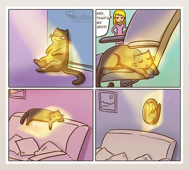 Cartoon - catsu HEY, THAT'S MY SPOTI cattcat.om