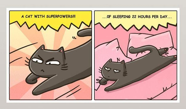 Cartoon - A CAT WITH SUPERPOWERSIII .OF SLEEPING 22 HOURS PER DAY...