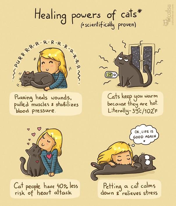 Cartoon - Healing powers of cats* (* scientifically proven) R-R-R 39 o Purring heals wounds, pulled muscles e stabilizes 'blood pressure. Cats keep you warm because they are hot. Literally-39c/102'F OK, LIFE IS GOOD AGAIN Cat people have 40% less risk of heart attack Petting a cat calms down g°relieves stress PURR. RR-R -R-R-R. catsu catsuthecat.com