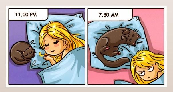 Cartoon - 11.00 PM 7.30 AM