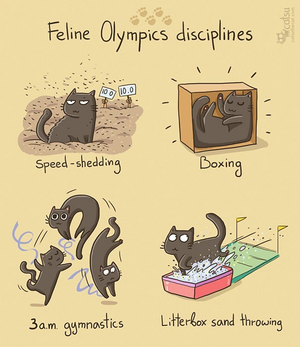 Text - Feline Olympics disciplines 10 0 10.0 Boxing Speed -shedding Litterbox sand throwing 3a.m. gymnostics catsu