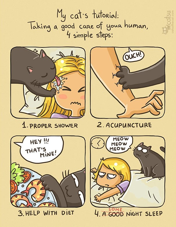 Comics - My cat's tutorial: Taking a good care of your human, 4 simple steps: OUCH! 1. PROPER SHOWER 2. ACUPUNCTURE НЕУ !!! МEOW MEOW THAT'S MINE! MEOW 3. HELP WITH DIET SOME 4. A GOOD NIGHT SLEEP catsu catsuthecat.com