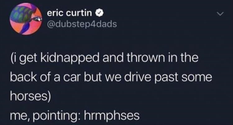 eric curtin @dubstep4dads (i get kidnapped and thrown in the back of a car but we drive past some horses) me, pointing: hrmphses