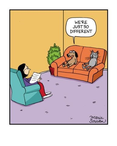 funny caricature cat and dog in couple therapy WE'RE JUST SO DIFFERENT