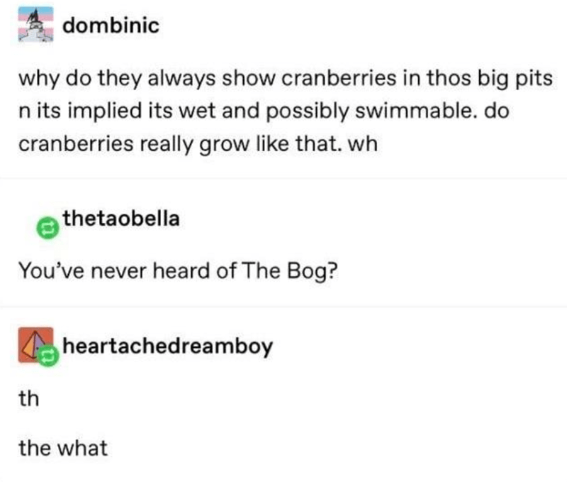 Text - dombinic why do they always show cranberries in thos big pits n its implied its wet and possibly swimmable. do cranberries really grow like that. wh thetaobella You've never heard of The Bog? heartachedreamboy th the what