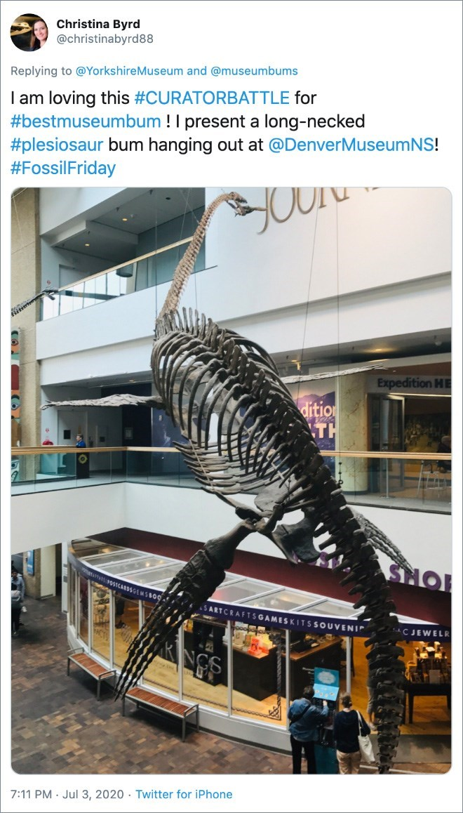 Organism - Christina Byrd @christinabyrd88 Replying to @YorkshireMuseum and @museumbums I am loving this #CURATORBATTLE for #bestmuseumbum !I present a long-necked #plesiosaur bum hanging out at @DenverMuseumNS! #FossilFriday Expedition HE dition TH TORS SARTCRAFTSGAMESKITSSOUVENIP CJEWELR KNGS 7:11 PM · Jul 3, 2020 - Twitter for iPhone