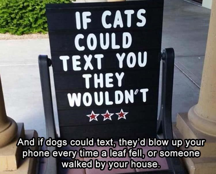 IF CATS COULD TEXT YOU THEY WOULD NOT And if dogs could text, they'd blow up yours phone every time a leaf fell, or someone walked by your house.