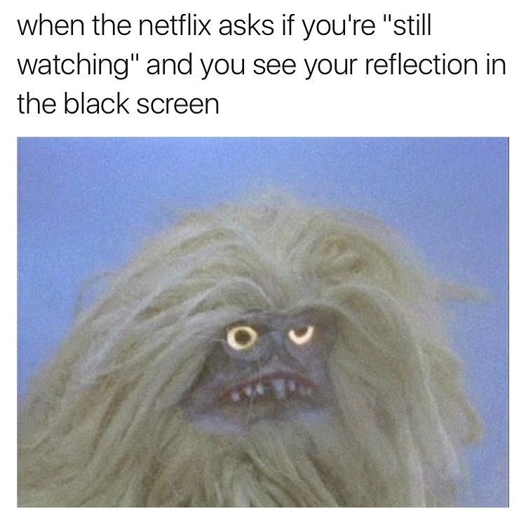 """funny memes - Snout - when the netflix asks if you're """"still watching"""" and you see your reflection in the black screen"""