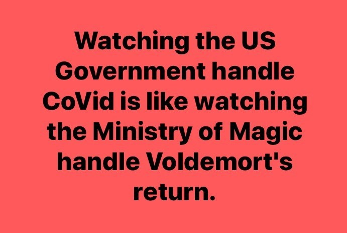 Text - Watching the US Government handle CoVid is like watching the Ministry of Magic handle Voldemort's return.