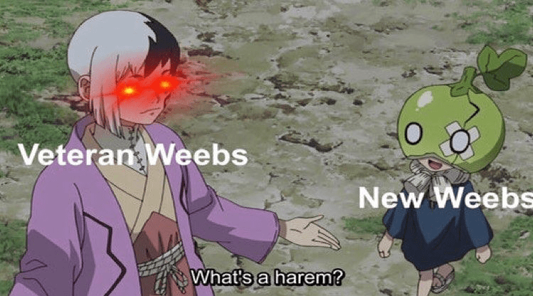 Cartoon - Veteran Weebs New Weebs What's a harem?