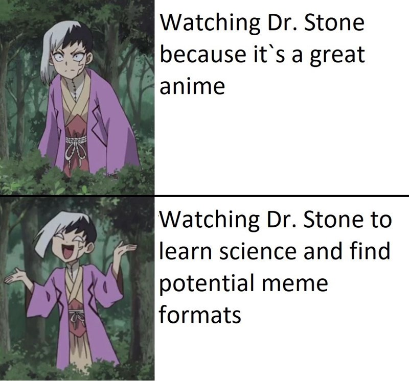 Cartoon - Watching Dr. Stone because it's a great anime Watching Dr. Stone to learn science and find potential meme formats