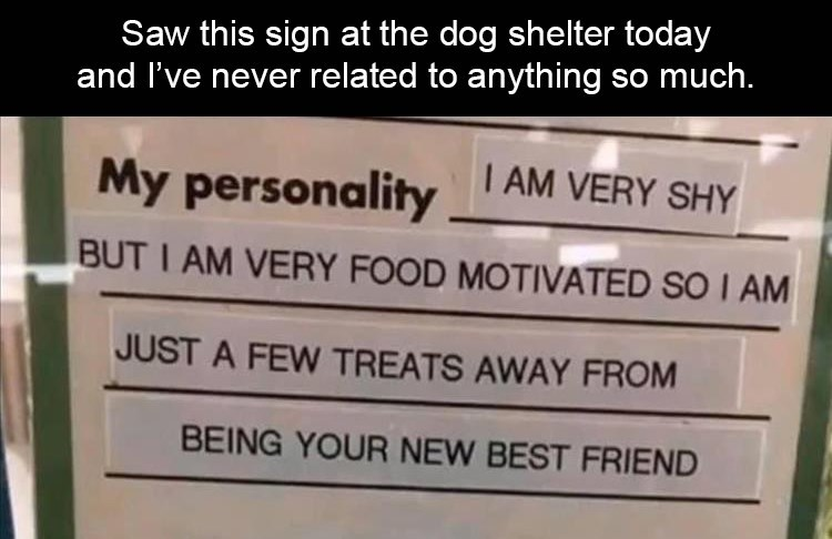 Saw this sign at the dog shelter today and I've never related to anything so much. My personality I AM VERY SHY BUT I AM VERY FOOD MOTIVATED SO I AM JUST A FEW TREATS AWAY FROM BEING YOUR NEW BEST FRIEND