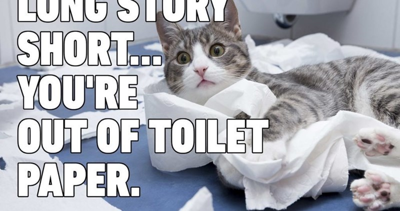 Cat - LUNG STURY SHORT. YOU'RE OUT OF TOILET PAPER.