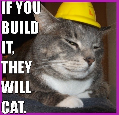 Cat - IF YOU BUILD IT, THEY WILL CAT.